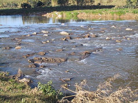 CONAGUA multa a Comala con 351 MDP por contaminar Arroyo Seco
