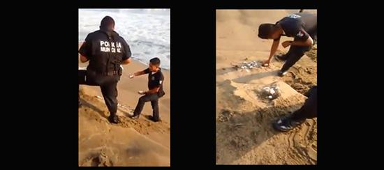 Profepa investiga caso de policías que arrojaron huevos de tortuga al mar