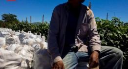 Delegado de la STyPS asegura que condiciones de jornaleros han mejorado en un 80%
