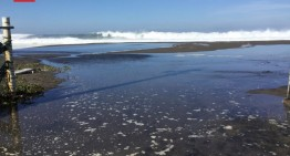"""""""Durante las próximas 36 horas Incrementará oleaje por mar de fondo"""": PC Estatal"""