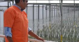 """""""Agroindustria, agricultura protegida y por contrato, prioridad de mi gobierno"""": Jorge Luis"""