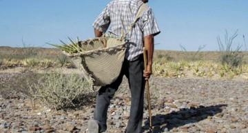 Hasta febrero un 76% del territorio de Colima tenía algún tipo de sequía: Conagua