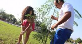 Comuna de Villa de Álvarez planta mil 200 árboles