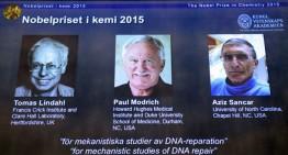 Investigadores del ADN ganan Nobel de Química 2015