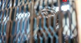 Liberan a comandante Cemeí, líder de autodefensas de la costa michoacana