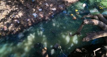 Reutilizar aguas residuales: Día Mundial del Agua