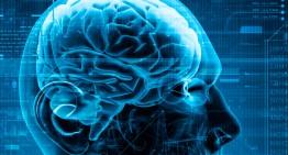 ¿Sabes como mantener tu cerebro saludable?