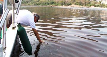 Coespris detecta marea roja tóxica en la bahía de Manzanillo