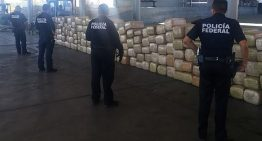 PF detecta cerca de tres toneladas de marihuana en Sonora