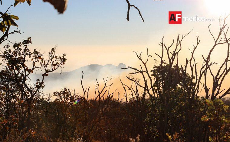 Consume incendio forestal 100 hectáreas de matorral en Galeana, NL