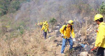 230 combatientes de incendios en periodo vacacional: Conafor