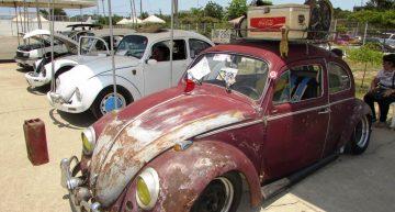 Más de 100 vehículos se exhibieron en el festival de coleccionistas Volkswagen