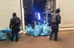 PF decomisa mercancía apócrifa de diversas marcas en Michoacán