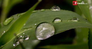 Primeras lluvias en Colima