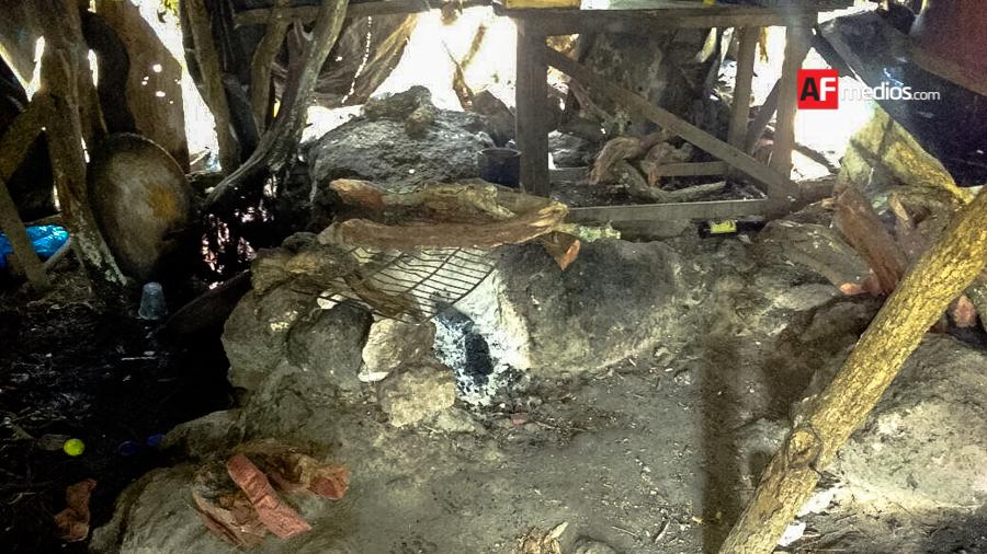 Hallan campamentos para adiestrar a criminales en Jalisco