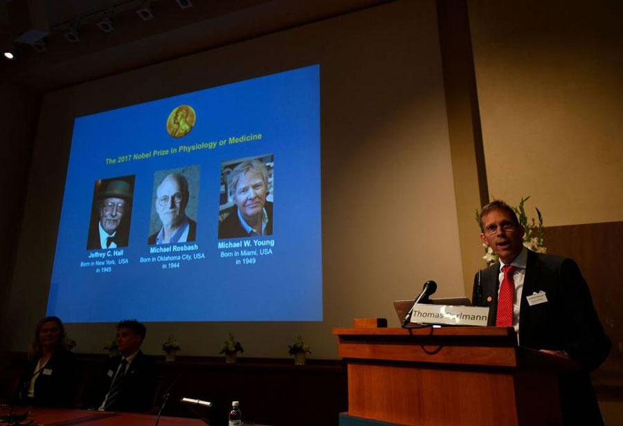 Tres estadounidenses ganan Nobel de Medicina