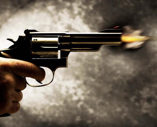 Diputado Javier Pinto presenta reformas para disminuir muertes accidentales por armas de fuego
