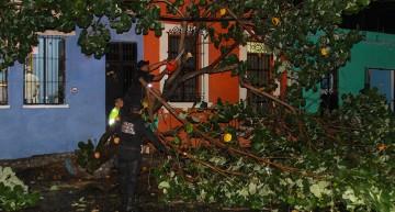 Apagones, encharcamientos y algunos árboles caídos, saldo de tormenta eléctrica de este martes