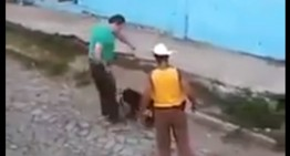 Sujetos que maltrataron a perrita libres, pero siguen sujetos a proceso: Fiscalía Jalisco