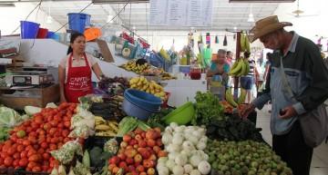 Precios de los alimentos aumentaron en octubre: FAO