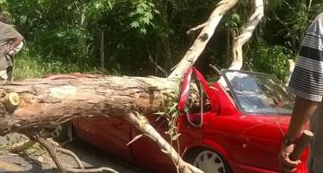 Accidente en Coquimatlán deja tres mujeres fallecidas