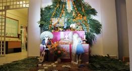 Realiza Voluntariado Universitario altar de muertos en el Mirador de la Cumbre