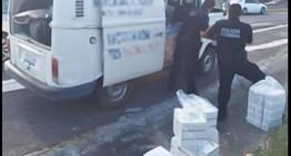 PF asegura en Nayarit vehículo que transportaba más de 70 mil cápsulas de medicamento apócrifo