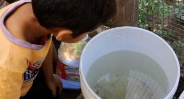 Población no ayuda como debiera a detener avance del zika: Salud