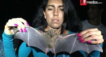 Colimenses aprendieron de murciélagos e insectos en El Rodeo