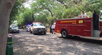 Por enjambre de abejas desalojan área de El Rodeo; una persona fue trasladada al HRU