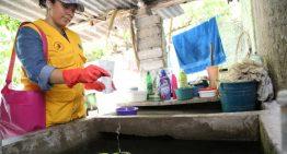 Salud cambia de larvicida para evitar resistencia del mosco