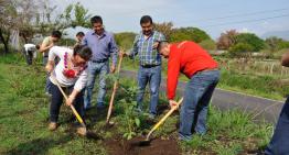 Campaña de Reforestación Municipal Comala 2016