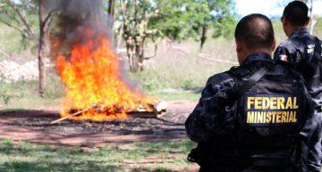 Durante junio se incautaron en el país 38 toneladas de marihuana, cocaína y metanfetamina