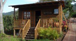 Conafor anuncia cierre del concurso 'Diseño de vivienda sustentable con madera'