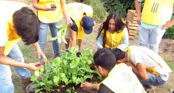 Estudiantes de la U de Colima elaboran huerto orgánico