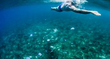 '#MaresLimpios' busca la eliminación para 2022 de plásticos en océanos: PNUMA