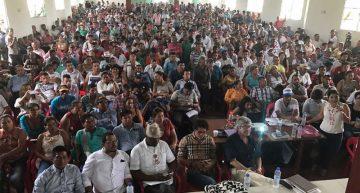 Gobierno de Colombia firma convenio de sustitución de cultivos ilícitos con 36 mil familias