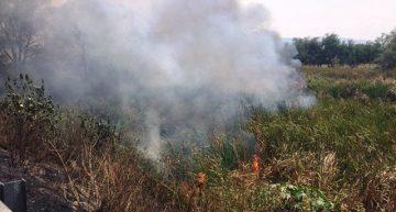 PC y Bomberos de Colima controlan incendio