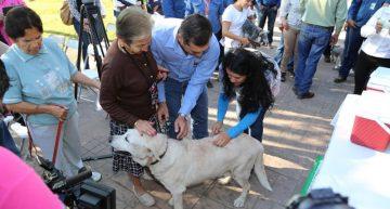 Campaña de vacunación antirrábica para perros y gatos