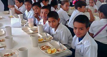 Alimentación escolar vital para erradicar el hambre y promover dietas sanas: FAO
