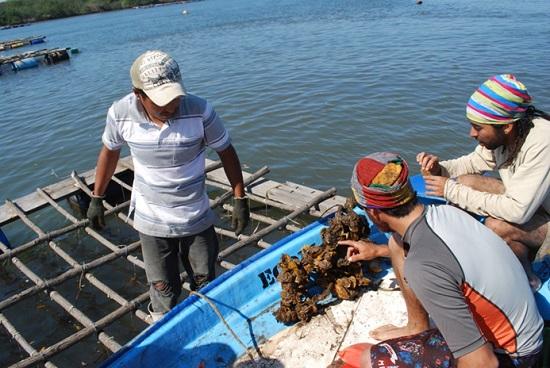 Foto:AFmedios/BP/El turismo rural es una alternativa económica para los pueblos.